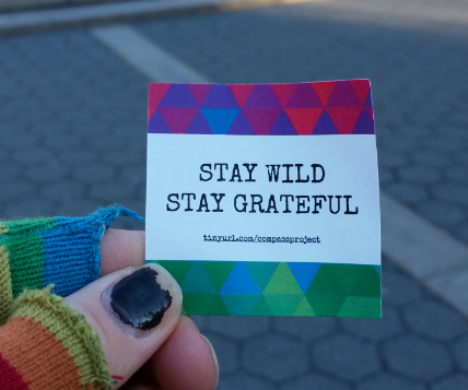 stay wild stay grateful